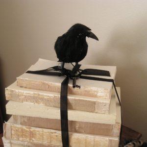decorar libros lo que sea quitar las cubiertas de los libros