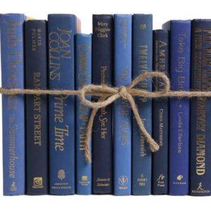 decorar libros libros azules en absoluto